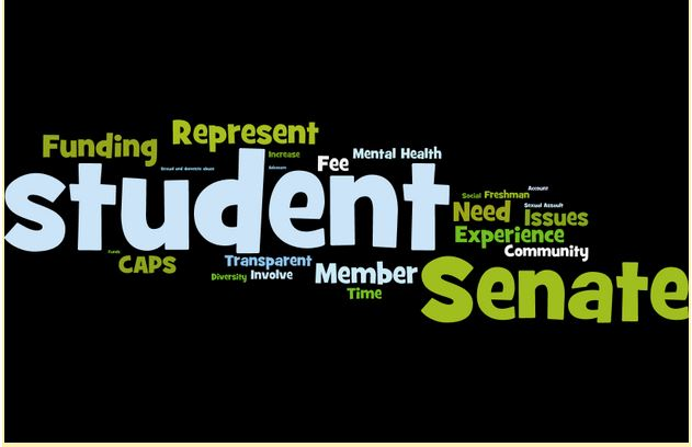 Buzzword, Buzzword, Blah, Blah, Blah: Why We Tune Out ASSU Senate Campaigns